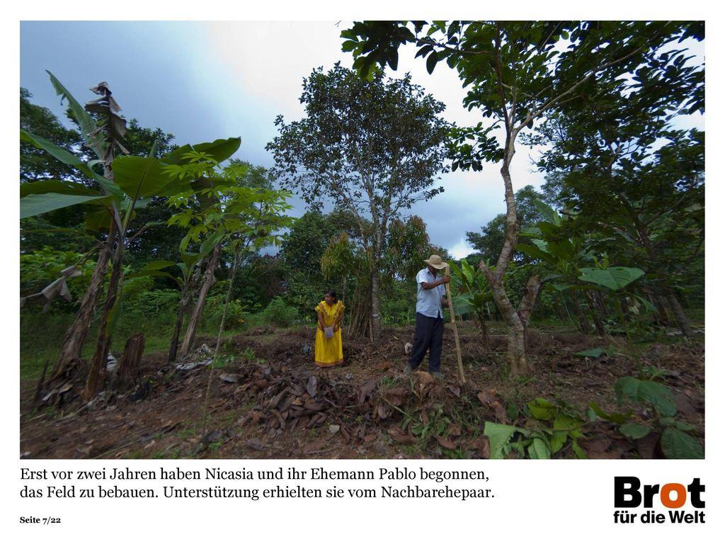 Erst vor zwei Jahren haben Nicasia und ihr Ehemann Pablo begonnen, das Feld zu bebauen.