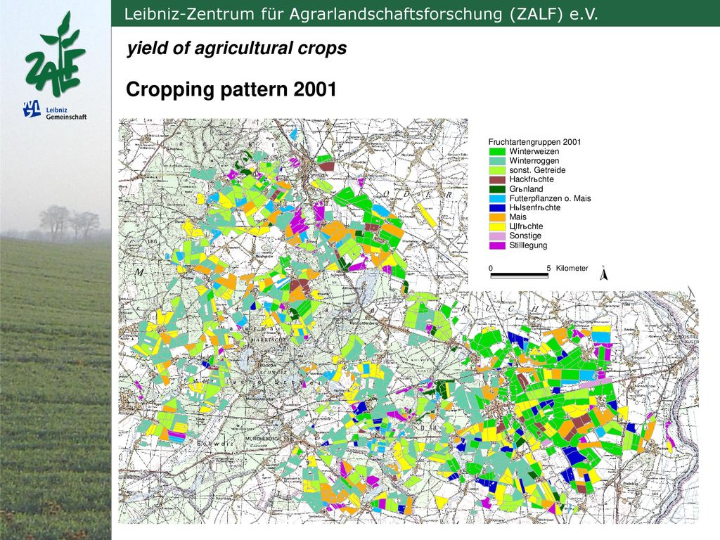 yield of agricultural crops