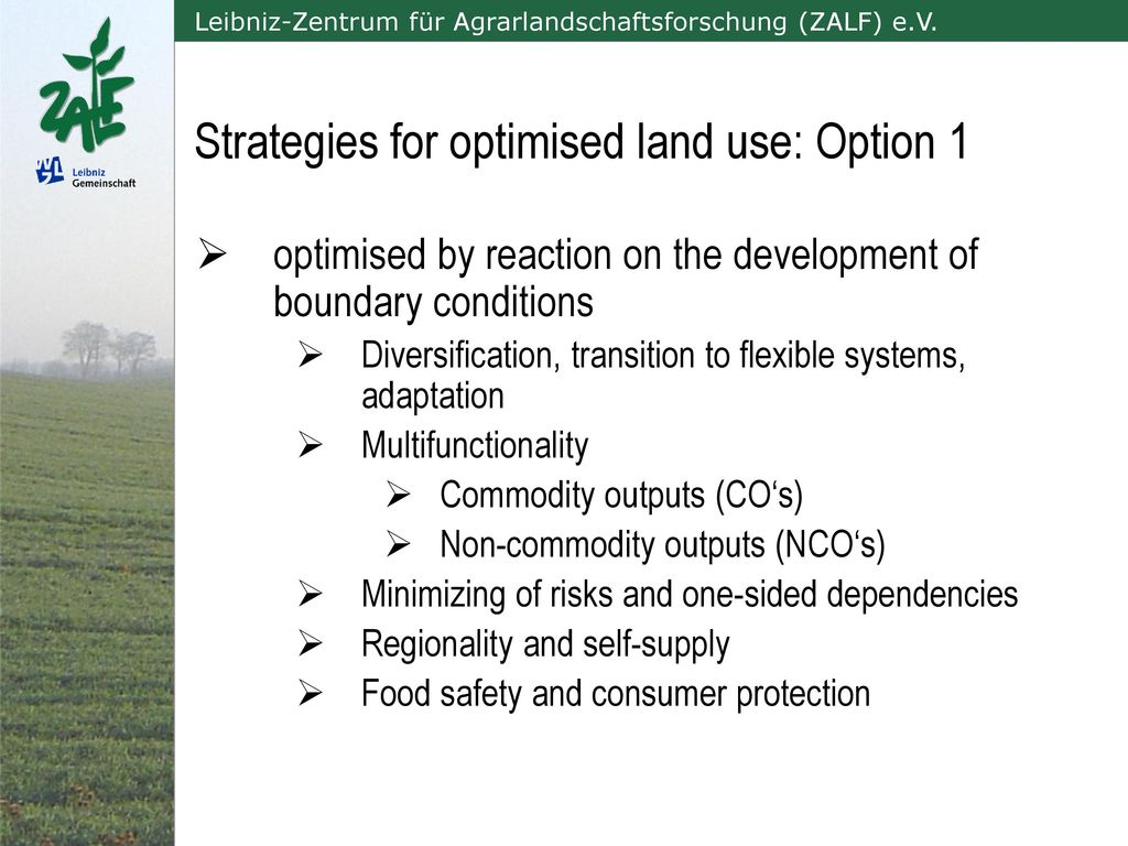 Strategies for optimised land use: Option 1
