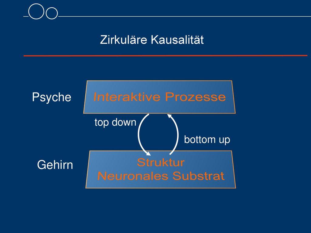 Interaktive Prozesse Struktur Neuronales Substrat Zirkuläre Kausalität