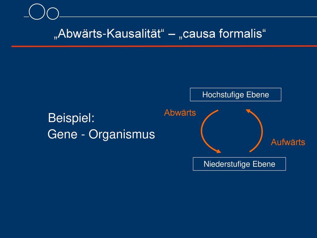"""""""Abwärts-Kausalität – """"causa formalis"""