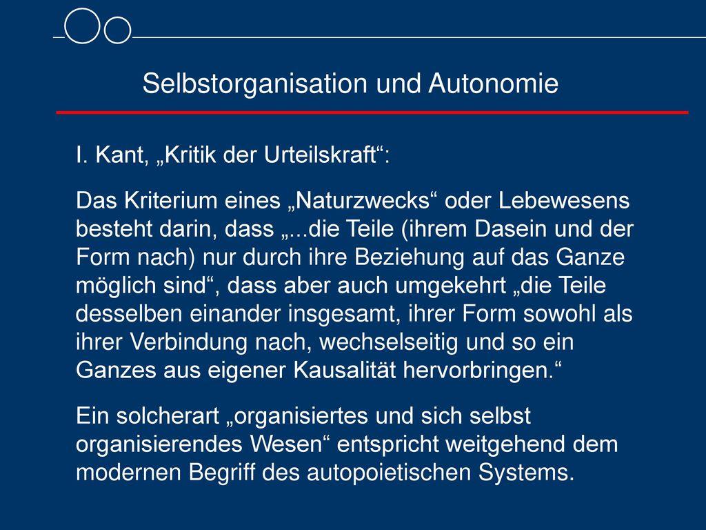 Selbstorganisation und Autonomie