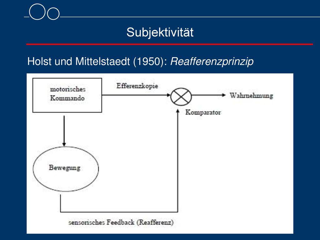 Holst und Mittelstaedt (1950): Reafferenzprinzip