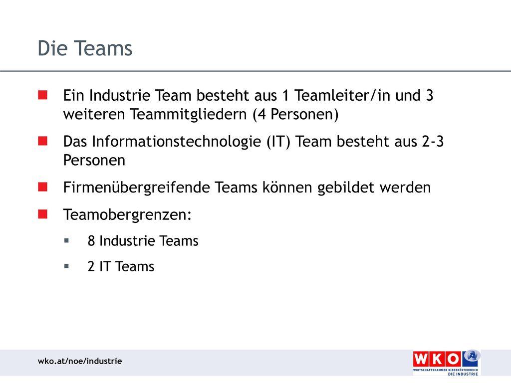 Die Teams Ein Industrie Team besteht aus 1 Teamleiter/in und 3 weiteren Teammitgliedern (4 Personen)