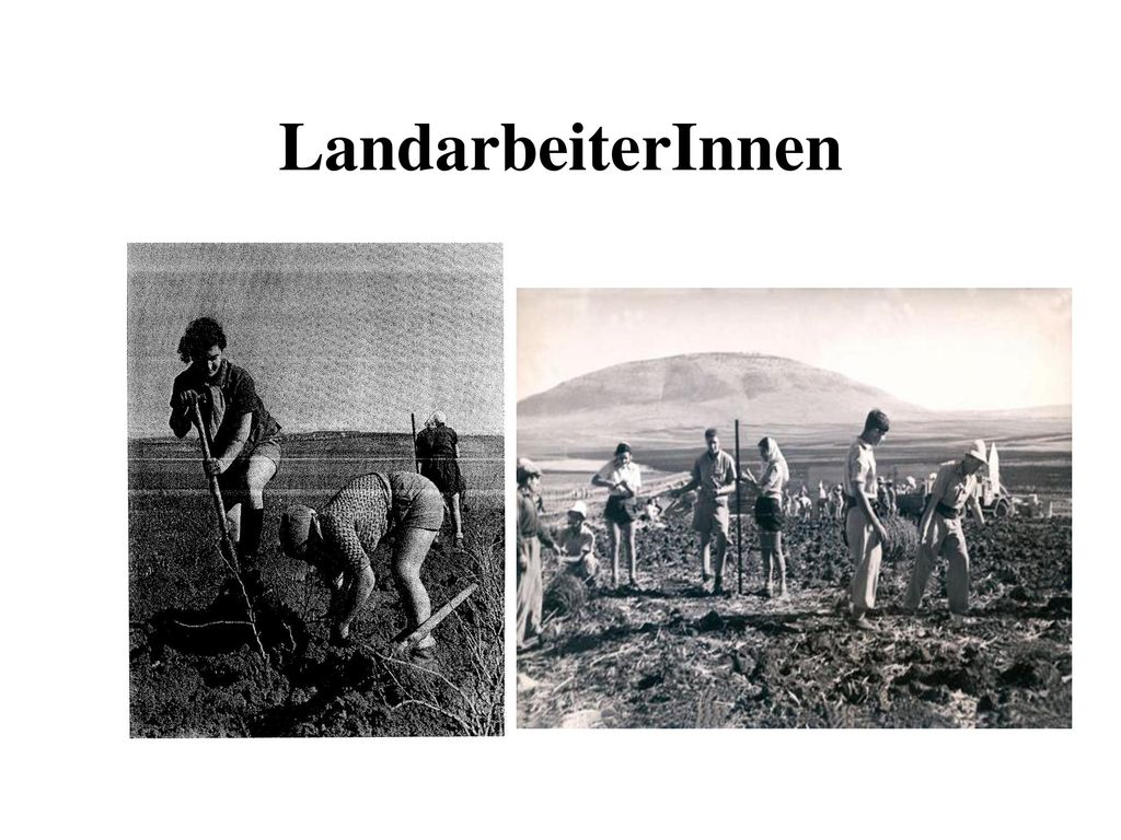 LandarbeiterInnen