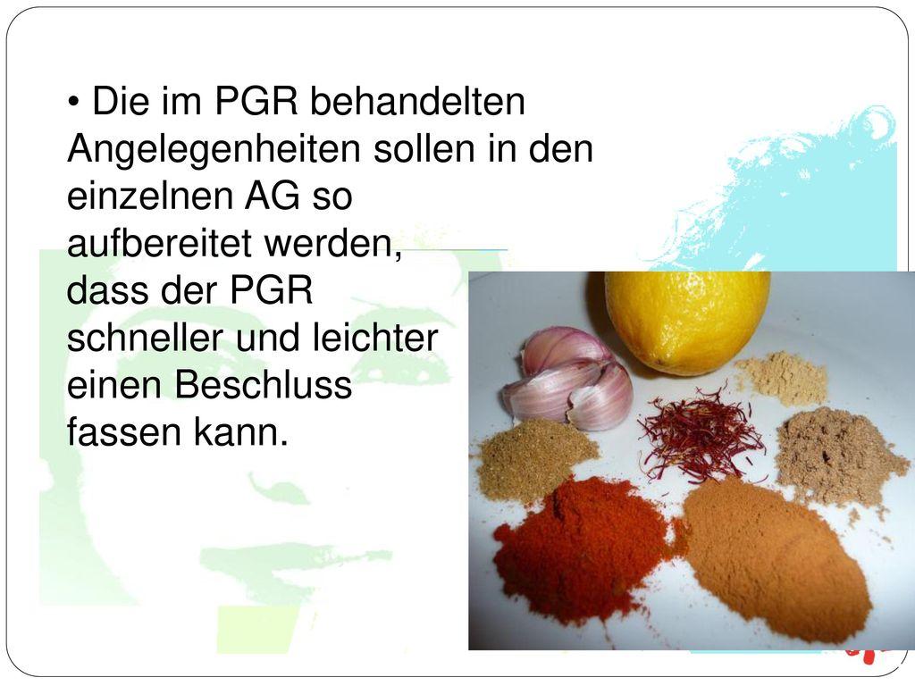 Die im PGR behandelten Angelegenheiten sollen in den einzelnen AG so aufbereitet werden, dass der PGR