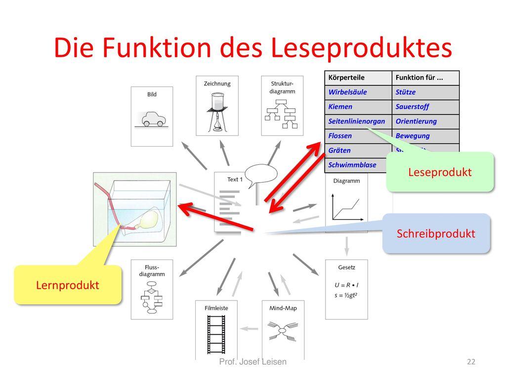 Schön Markiertes Diagramm Von Wirbelsäulen Fotos - Menschliche ...