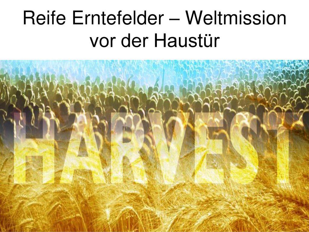 Reife Erntefelder – Weltmission vor der Haustür