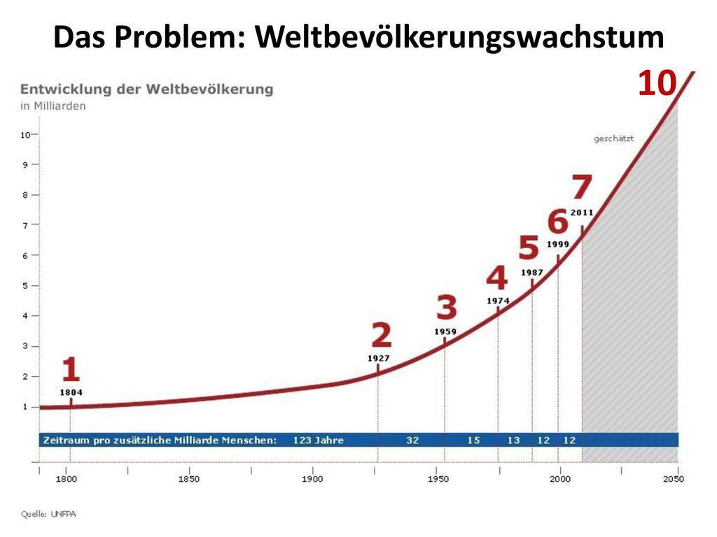Das Problem: Weltbevölkerungswachstum