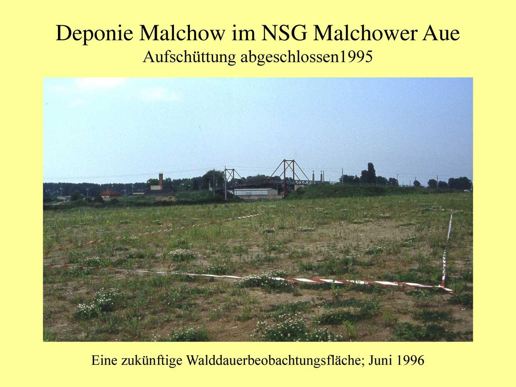 Deponie Malchow im NSG Malchower Aue
