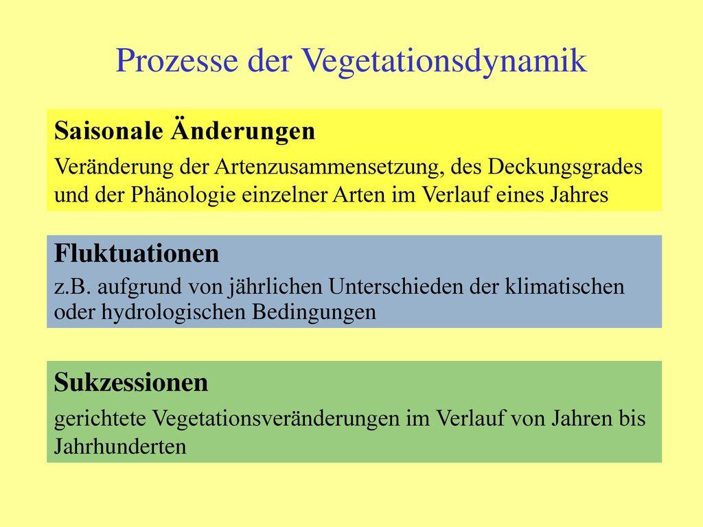 Prozesse der Vegetationsdynamik