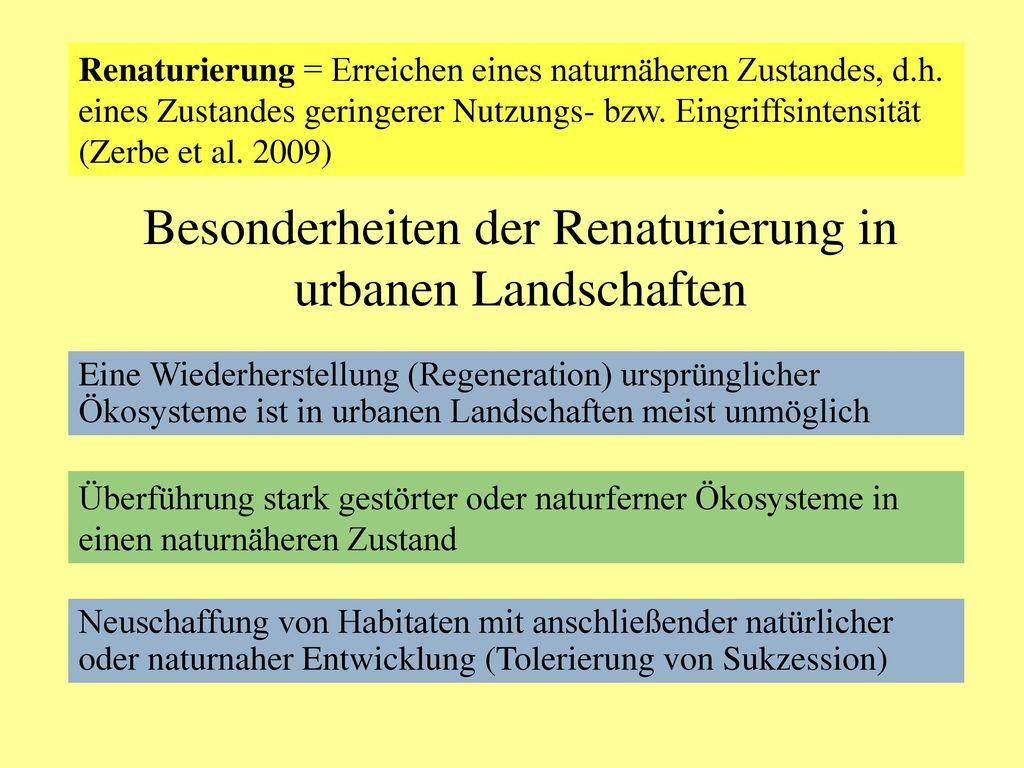 Besonderheiten der Renaturierung in urbanen Landschaften