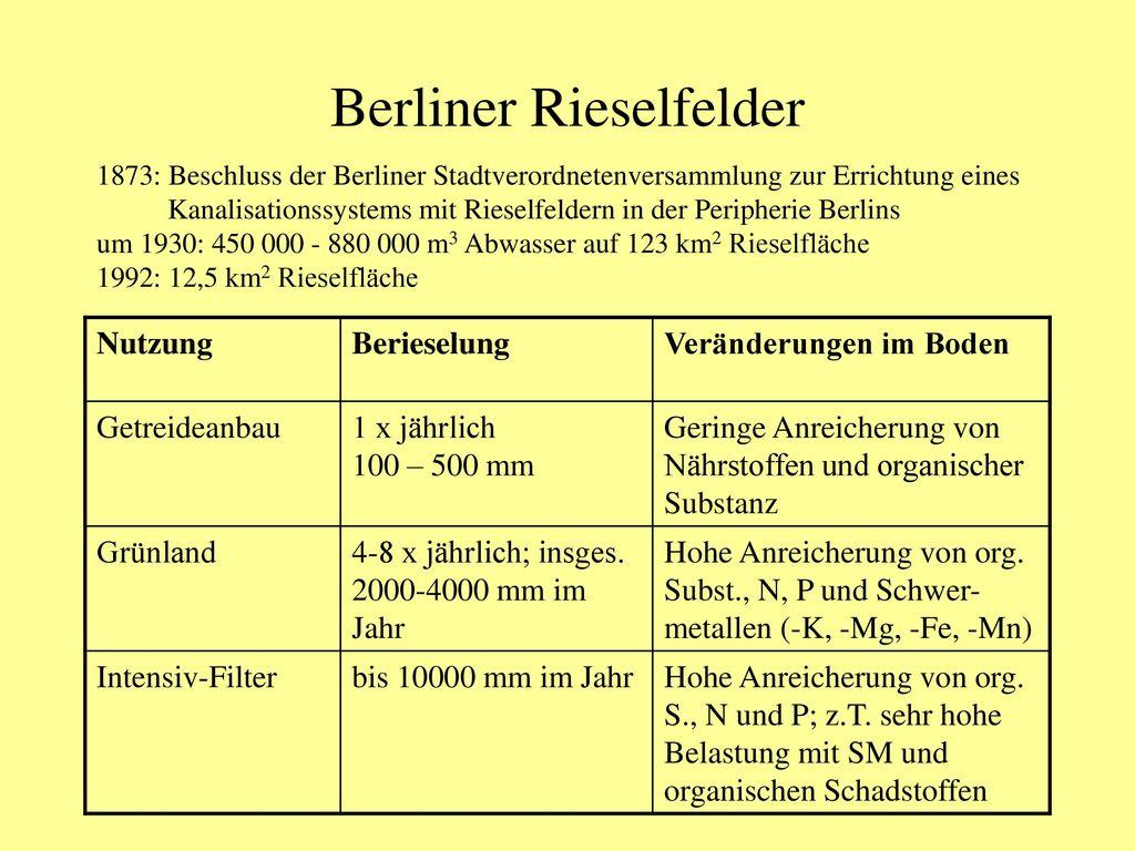 Berliner Rieselfelder