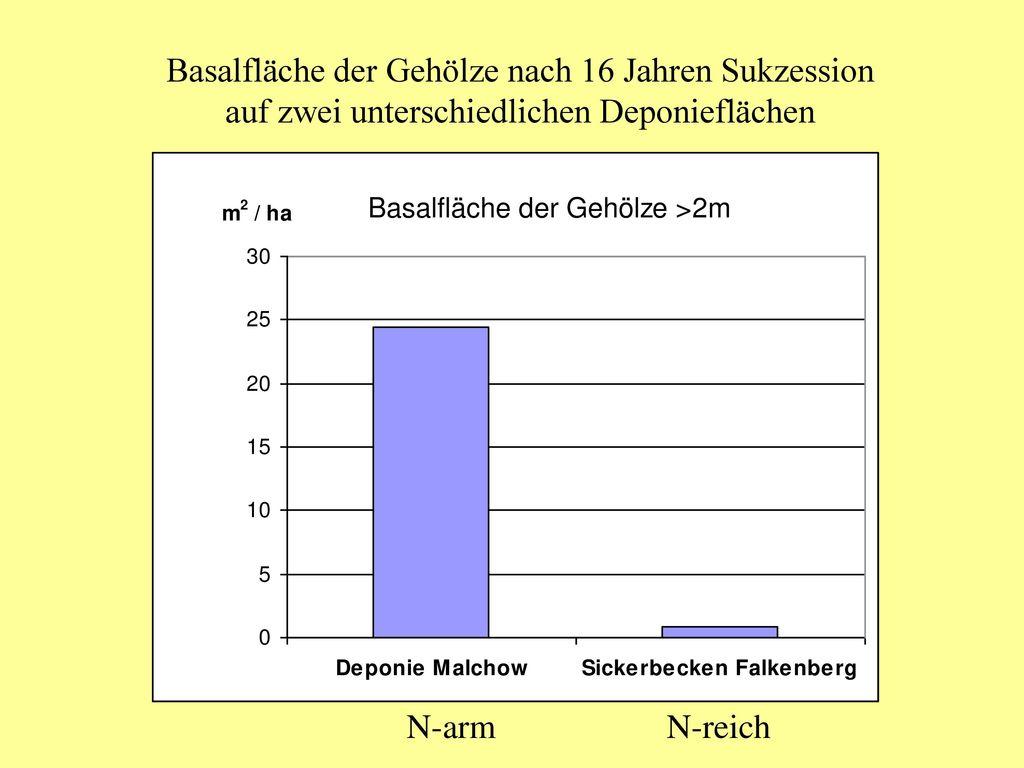 Basalfläche der Gehölze nach 16 Jahren Sukzession auf zwei unterschiedlichen Deponieflächen