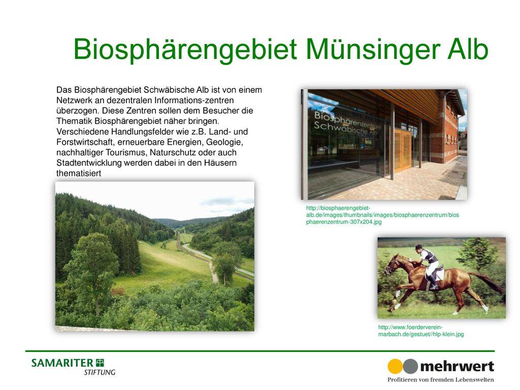Biosphärengebiet Münsinger Alb