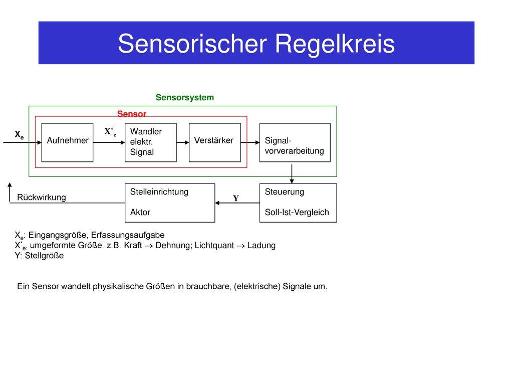 Sensorischer Regelkreis
