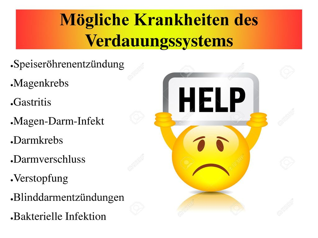 Nett Verdauungssystem Kennzeichnung Arbeitsblatt Fotos - Mathe ...