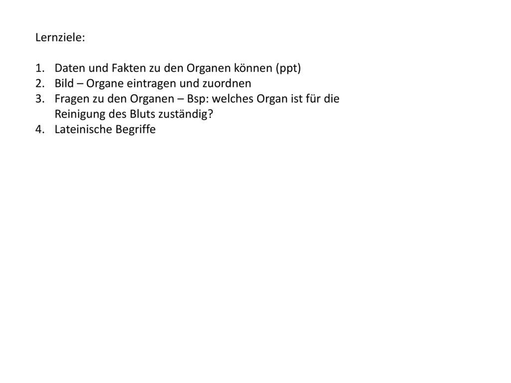Berühmt Femur Fakten Bilder - Anatomie Und Physiologie Knochen ...