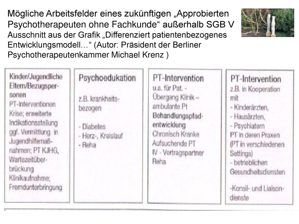 """Mögliche Arbeitsfelder eines zukünftigen """"Approbierten Psychotherapeuten ohne Fachkunde außerhalb SGB V"""