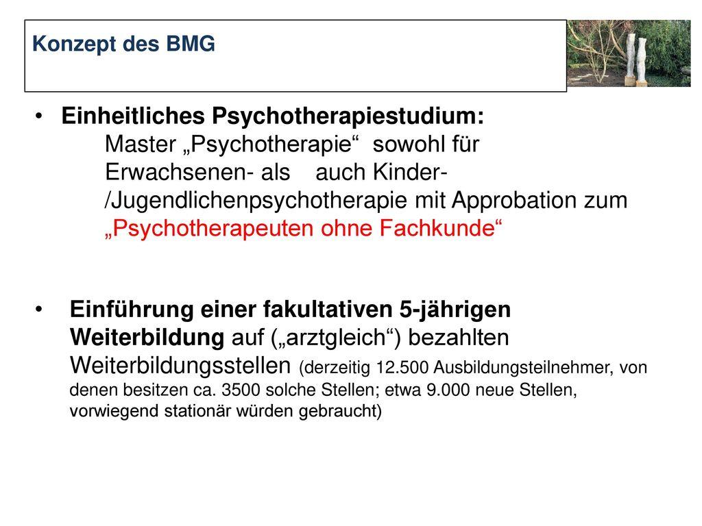 Konzept des BMG Einheitliches Psychotherapiestudium: