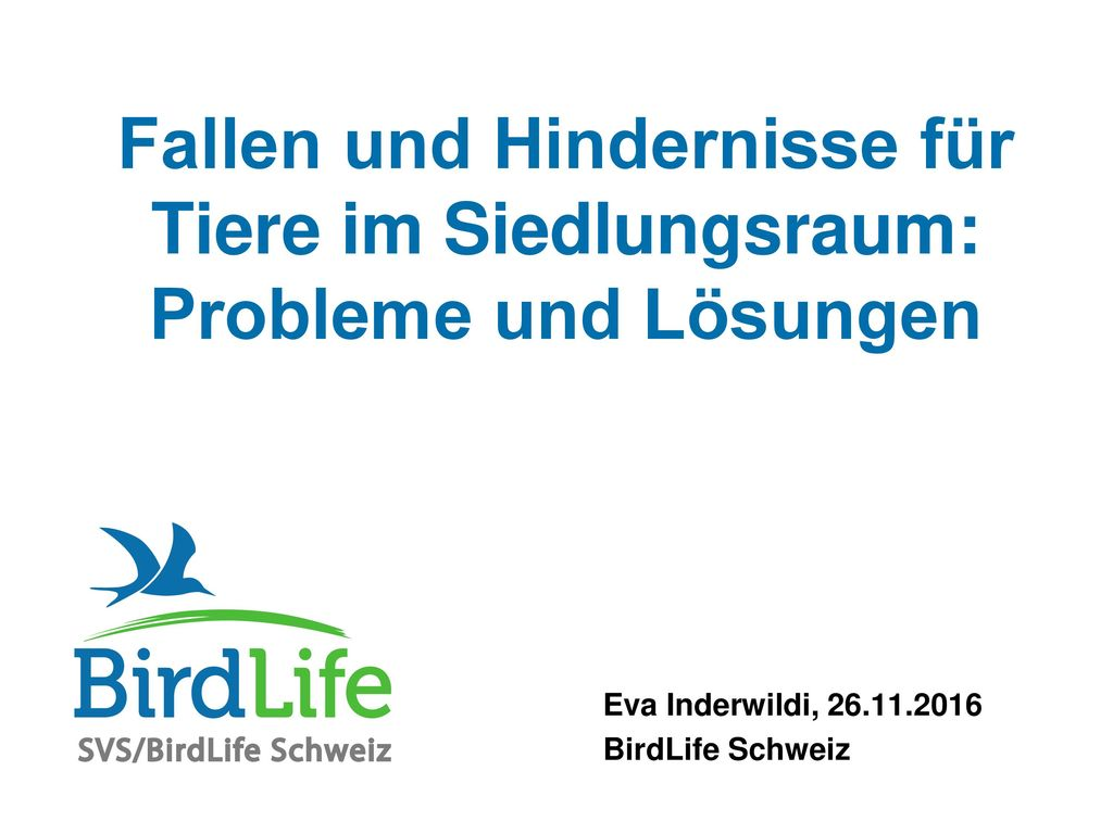 Eva Inderwildi, 26.11.2016 BirdLife Schweiz