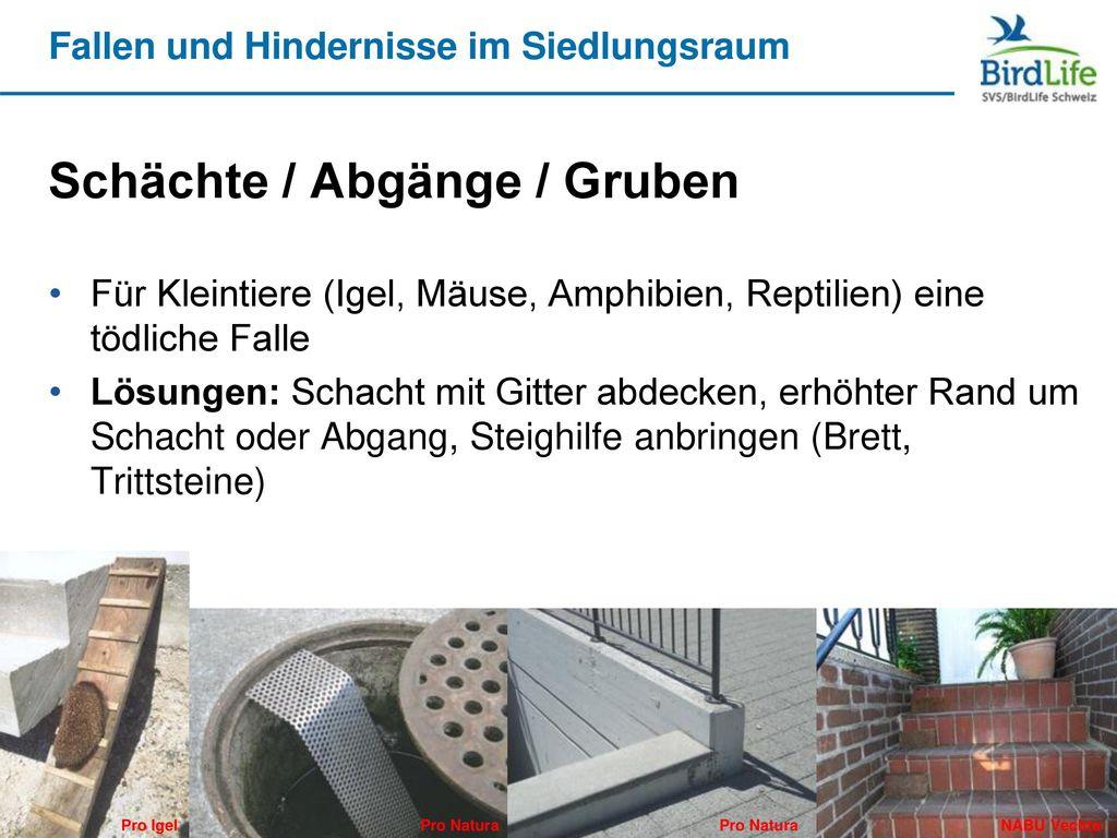 Schächte / Abgänge / Gruben