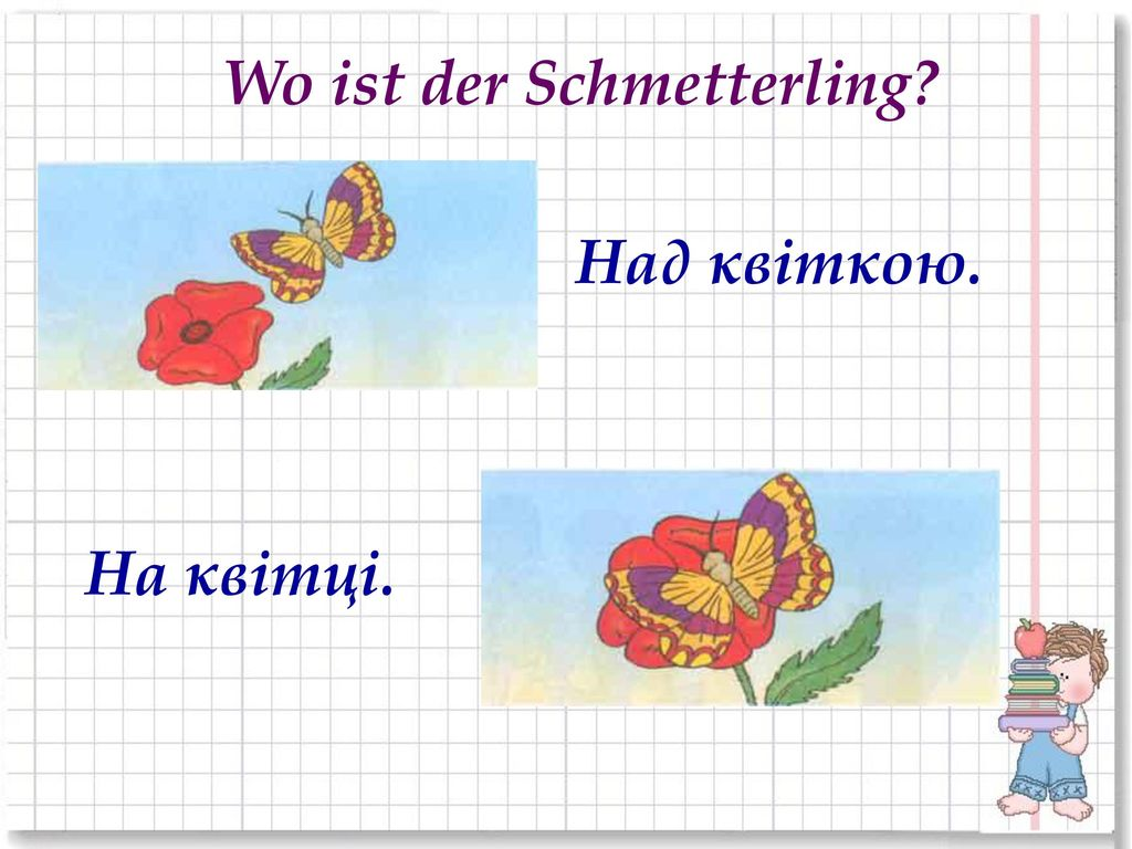 Wo ist der Schmetterling