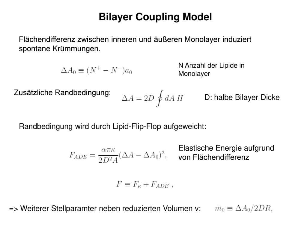 Bilayer Coupling Model