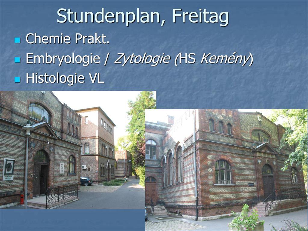 Stundenplan, Freitag Chemie Prakt. Embryologie / Zytologie (HS Kemény)