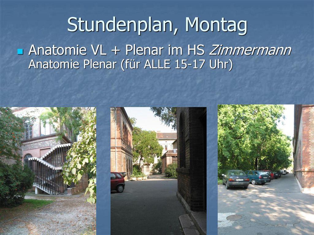 Stundenplan, Montag Anatomie VL + Plenar im HS Zimmermann Anatomie Plenar (für ALLE 15-17 Uhr)