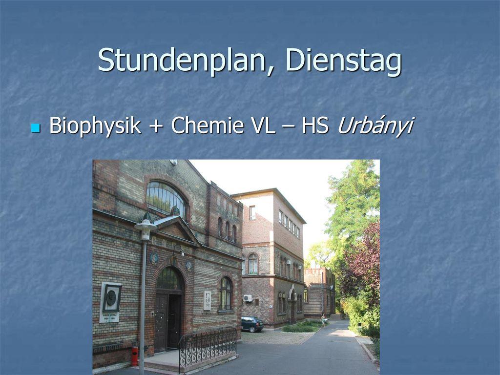 Stundenplan, Dienstag Biophysik + Chemie VL – HS Urbányi