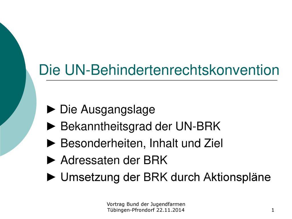 Die UN-Behindertenrechtskonvention