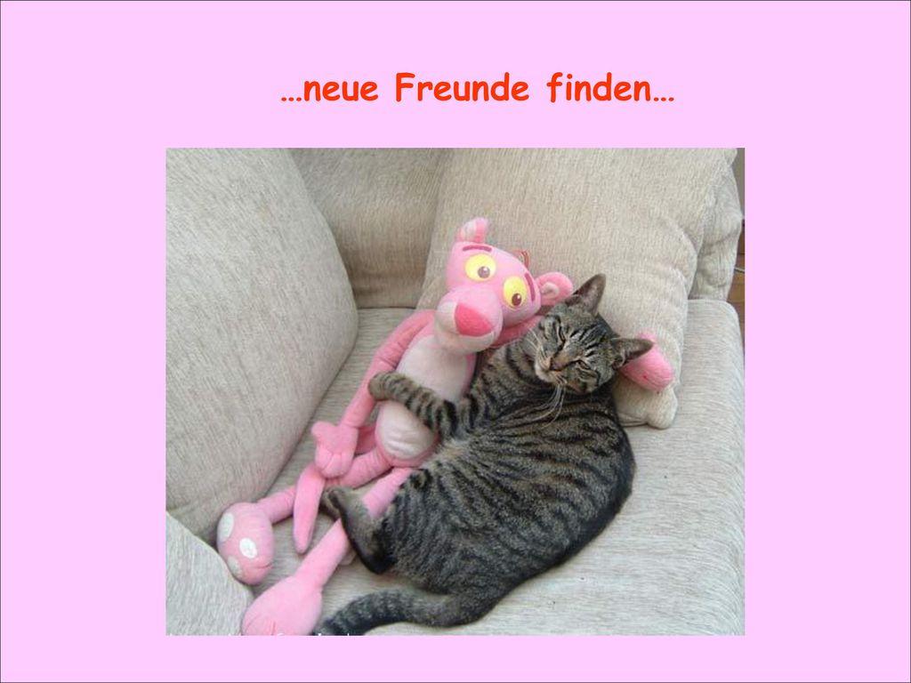 …neue Freunde finden…