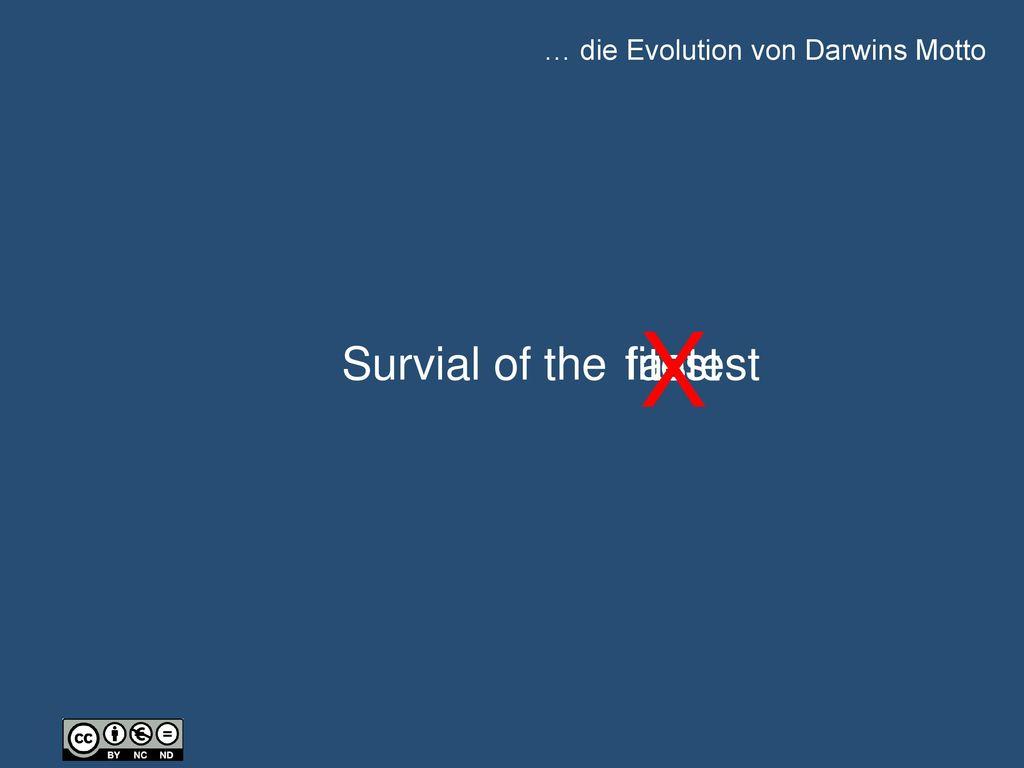 … die Evolution von Darwins Motto