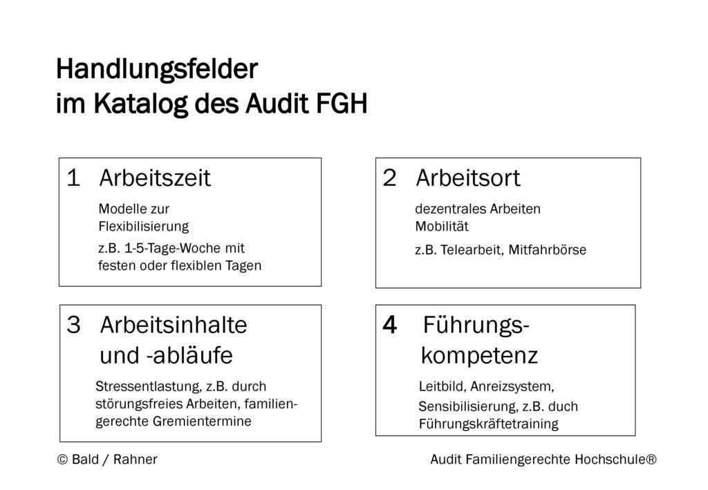Handlungsfelder im Katalog des Audit FGH