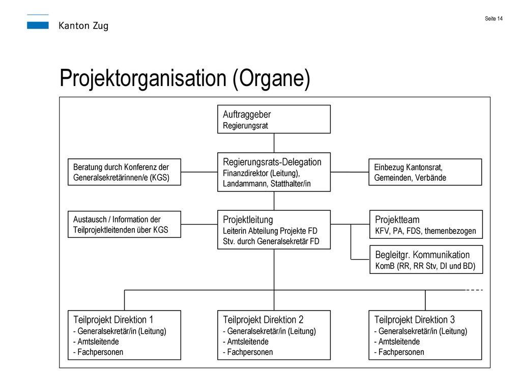 Projektorganisation (Organe)