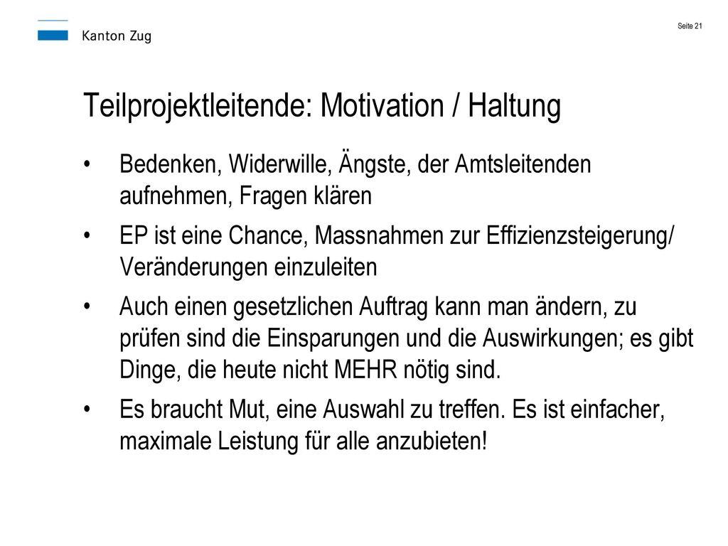 Teilprojektleitende: Motivation / Haltung
