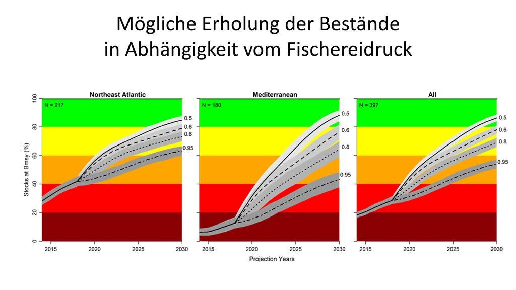 Mögliche Erholung der Bestände in Abhängigkeit vom Fischereidruck
