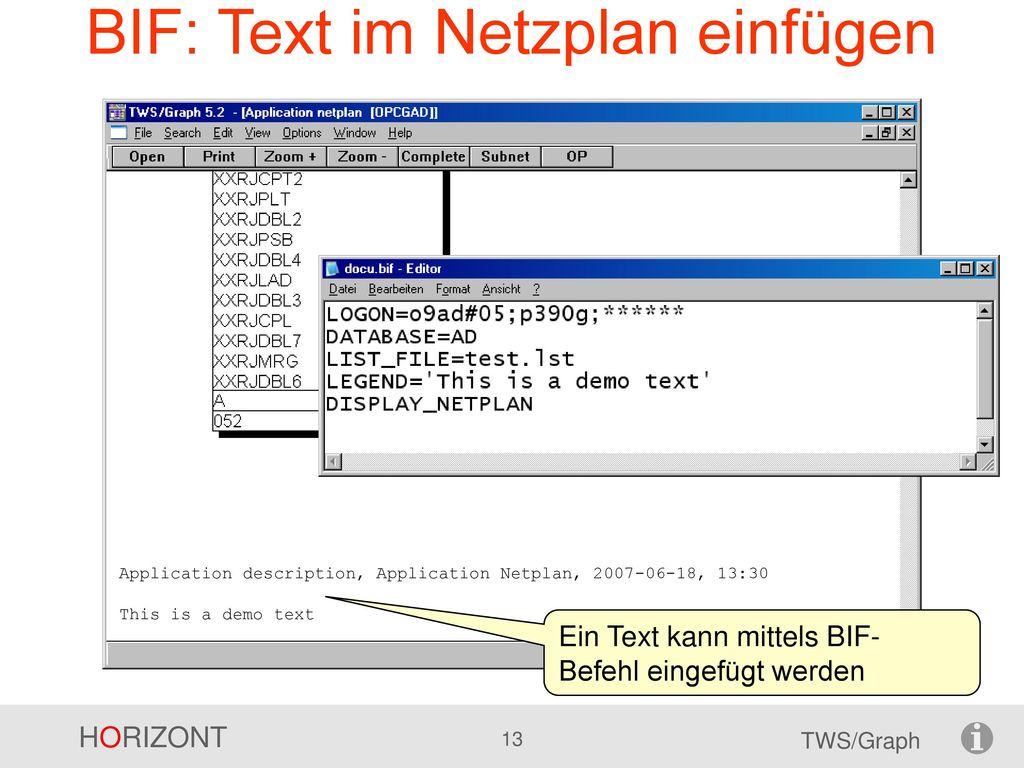 BIF: Text im Netzplan einfügen