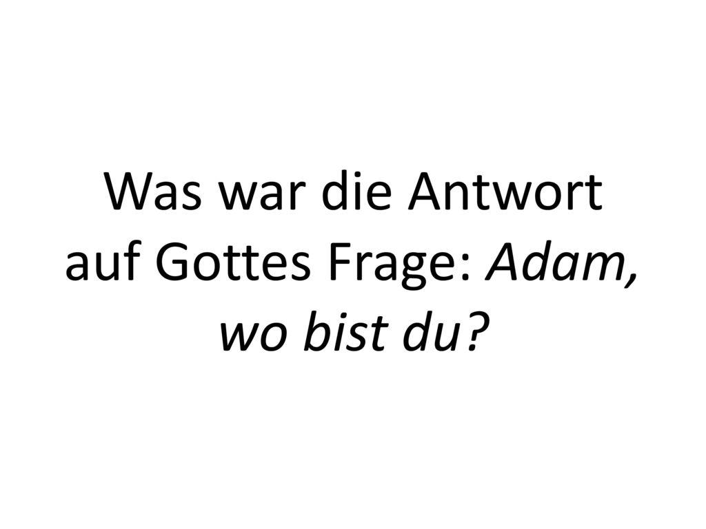 Was war die Antwort auf Gottes Frage: Adam, wo bist du