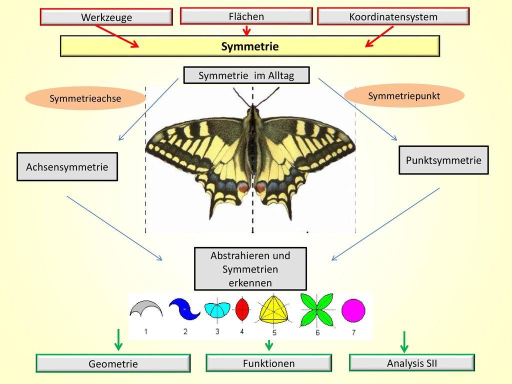 Abstrahieren und Symmetrien erkennen