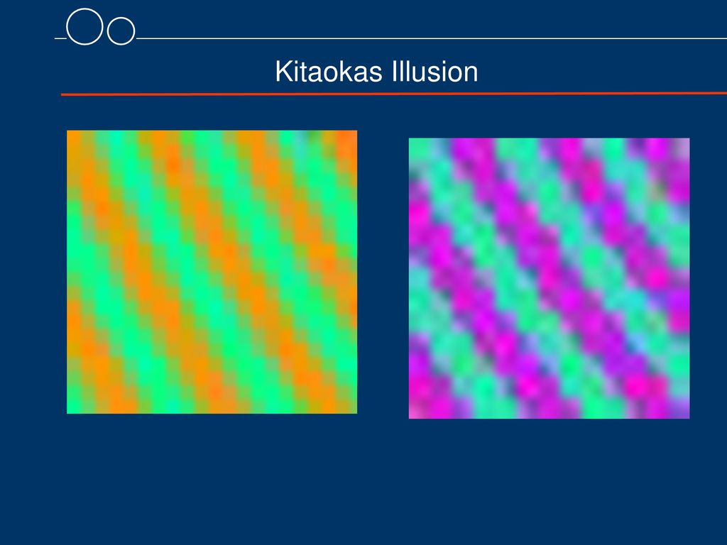 Kitaokas Illusion 8