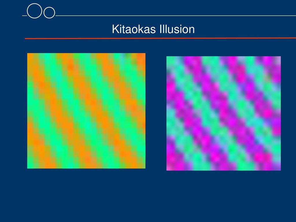 Kitaokas Illusion 8