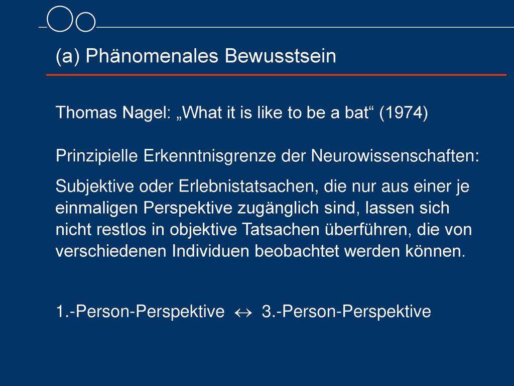 (a) Phänomenales Bewusstsein