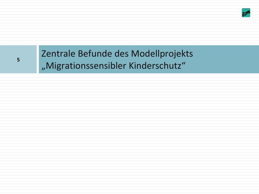 """Zentrale Befunde des Modellprojekts """"Migrationssensibler Kinderschutz"""