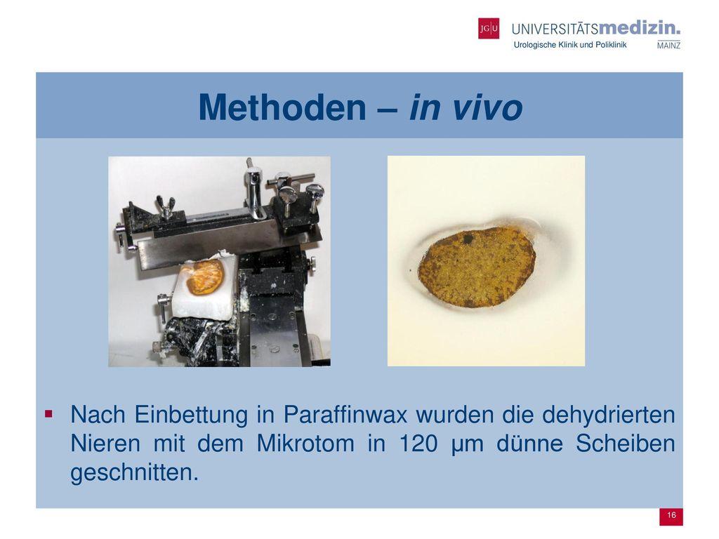 Methoden – in vivo Nach Einbettung in Paraffinwax wurden die dehydrierten Nieren mit dem Mikrotom in 120 µm dünne Scheiben geschnitten.