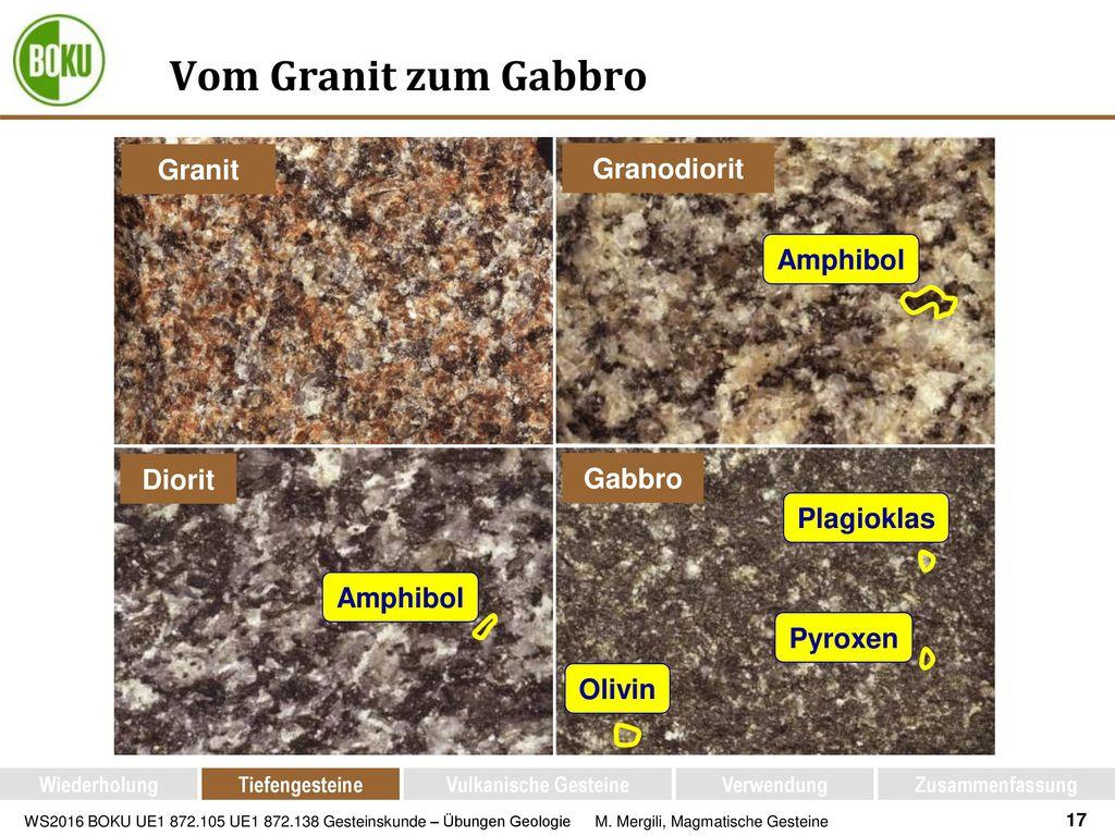 Vom Granit zum Gabbro Granit Granodiorit Amphibol Diorit Gabbro