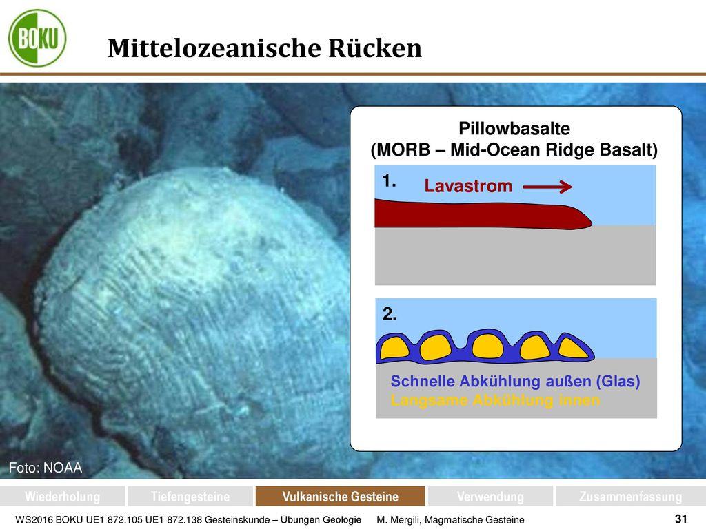 Mittelozeanische Rücken