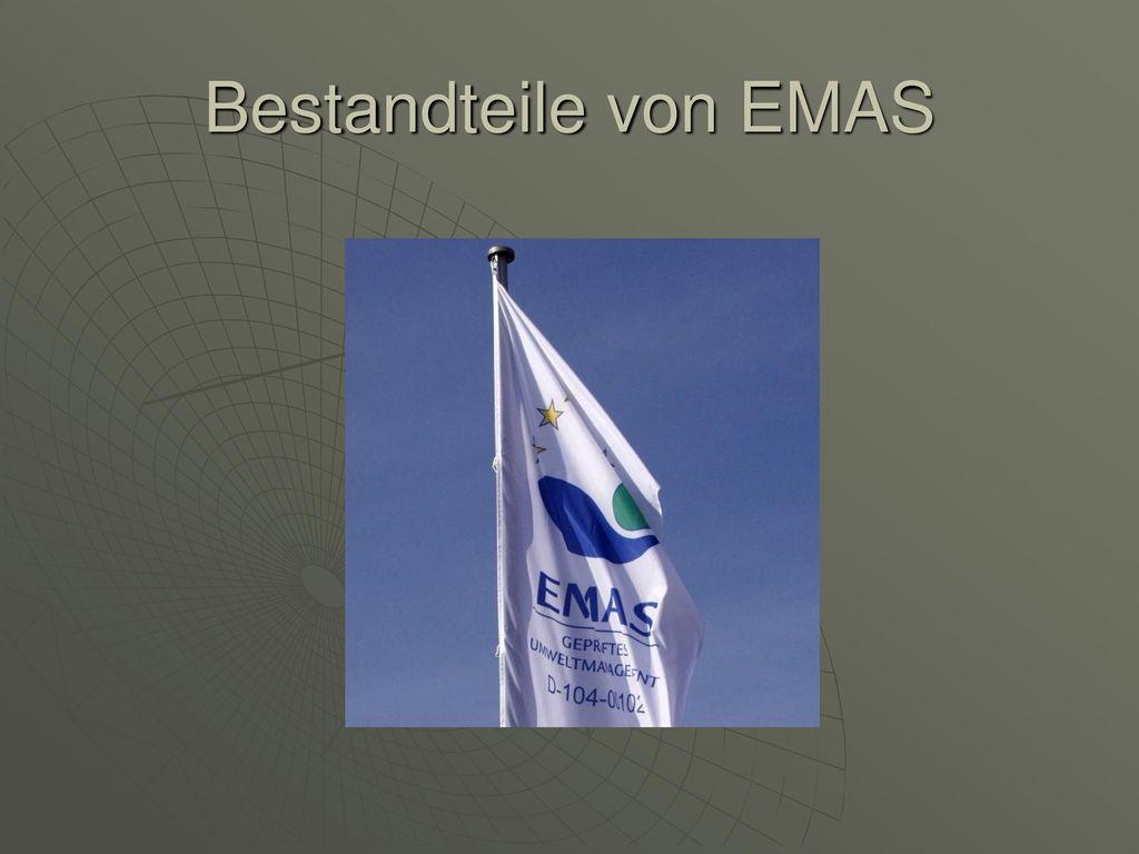 Bestandteile von EMAS