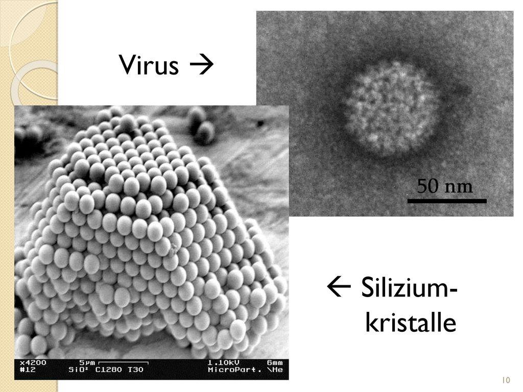 Virus   Silizium- kristalle 10